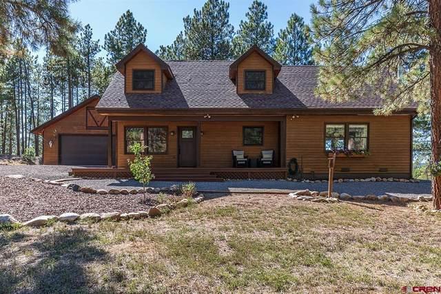 599 Elk Valley Road, Bayfield, CO 81122 (MLS #787208) :: Berkshire Hathaway HomeServices Western Colorado Properties