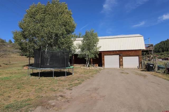 9902 W Highway 160, Pagosa Springs, CO 81147 (MLS #787216) :: Dawn Howe Group | Keller Williams Colorado West Realty