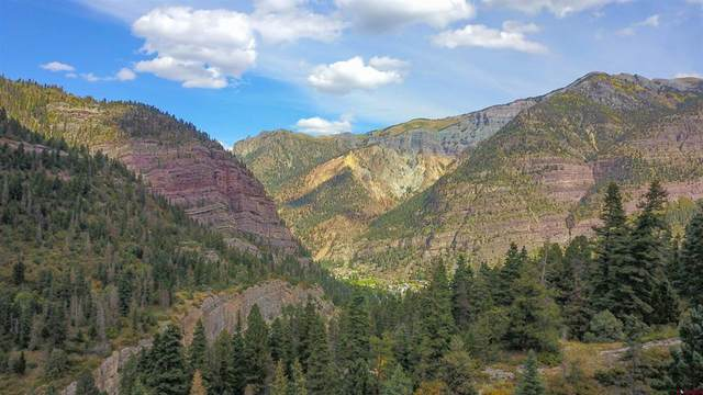 tbd County Road 361, Ouray, CO 81427 (MLS #787217) :: Berkshire Hathaway HomeServices Western Colorado Properties
