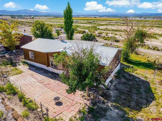 63530 Juniper Road, Montrose, CO 81401 (MLS #787221) :: The Howe Group   Keller Williams Colorado West Realty
