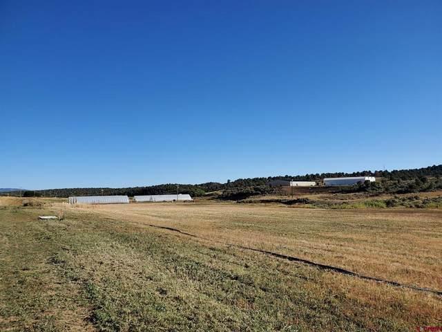 17 Dana Drive, Bayfield, CO 81122 (MLS #787228) :: Berkshire Hathaway HomeServices Western Colorado Properties
