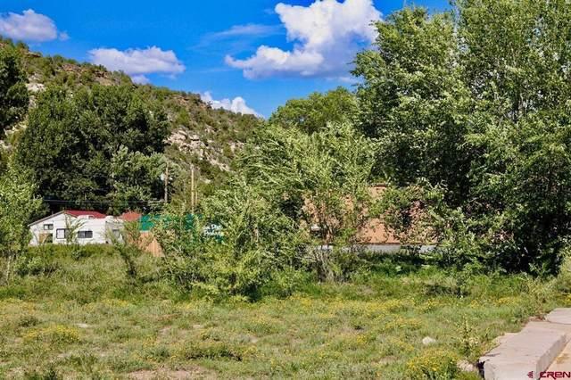 417 Central Avenue, Dolores, CO 81323 (MLS #787229) :: Berkshire Hathaway HomeServices Western Colorado Properties