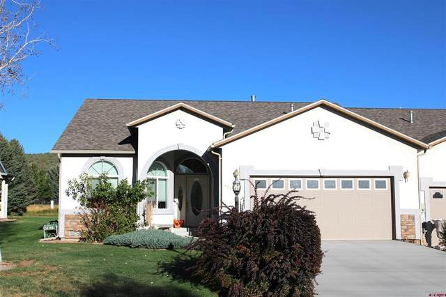 420 SE Old Goat Trail, Cedaredge, CO 81413 (MLS #787231) :: Berkshire Hathaway HomeServices Western Colorado Properties