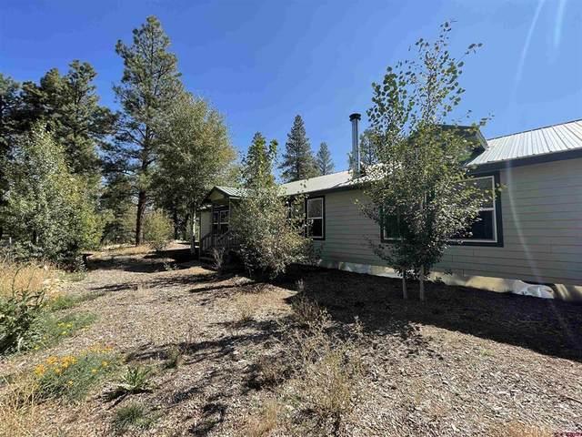 234 Nutria Circle, Pagosa Springs, CO 81147 (MLS #787232) :: Dawn Howe Group | Keller Williams Colorado West Realty