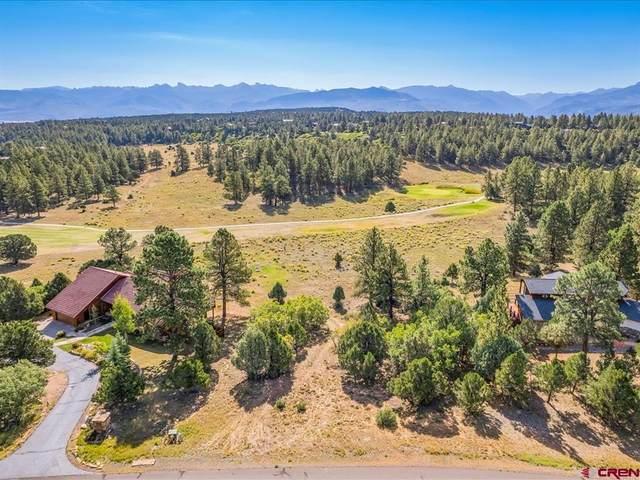 540 Marmot Drive, Ridgway, CO 81432 (MLS #787236) :: Berkshire Hathaway HomeServices Western Colorado Properties