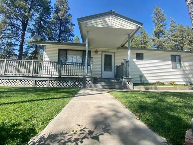 86 Oak Drive, Pagosa Springs, CO 81147 (MLS #787239) :: Berkshire Hathaway HomeServices Western Colorado Properties
