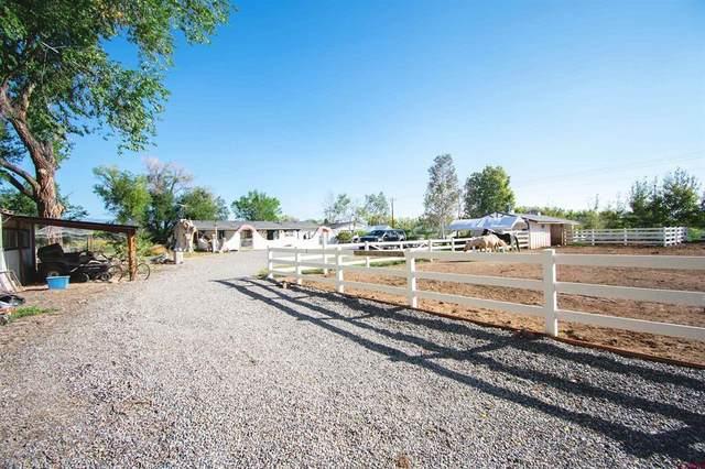 3743 1600 Road, Delta, CO 81416 (MLS #787241) :: Berkshire Hathaway HomeServices Western Colorado Properties
