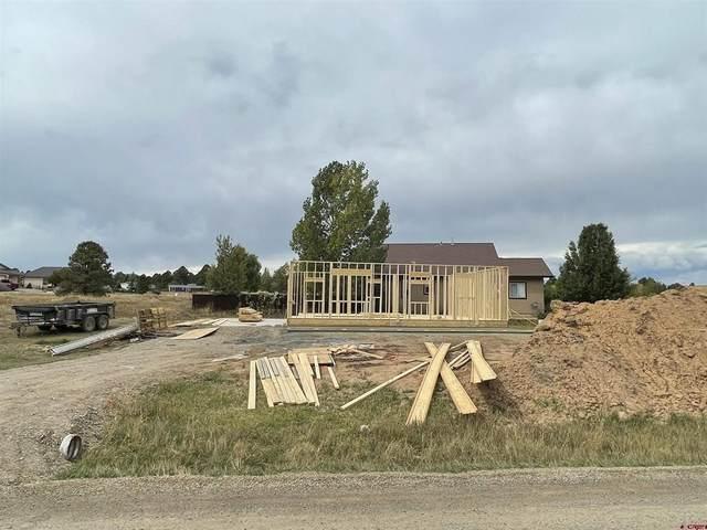 69 Port Avenue, Pagosa Springs, CO 81147 (MLS #787254) :: The Howe Group   Keller Williams Colorado West Realty