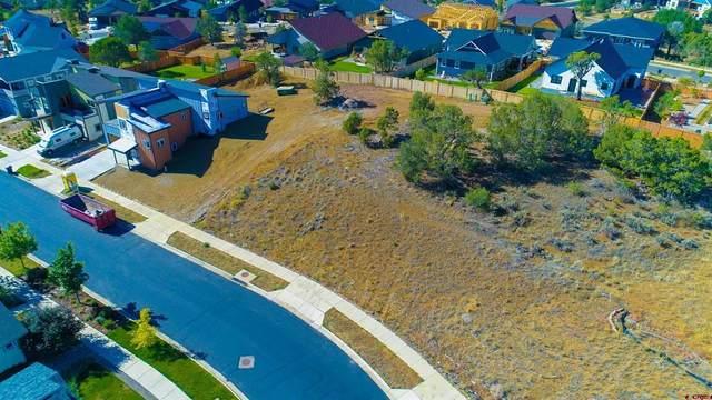 481 Oxbow Circle, Durango, CO 81301 (MLS #787270) :: Durango Mountain Realty