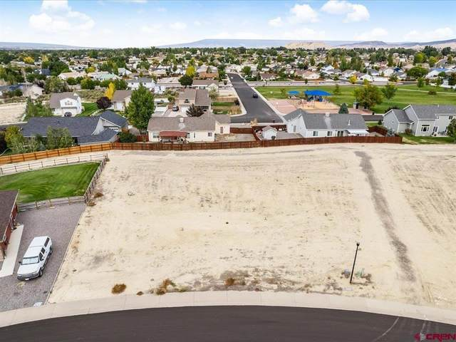Lot 43-S Silver Fox Drive, Montrose, CO 81401 (MLS #787314) :: The Howe Group | Keller Williams Colorado West Realty
