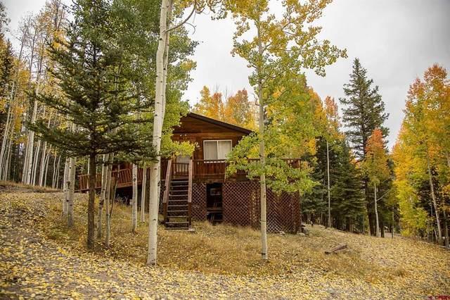 32091 Bristol Head Drive, Creede, CO 81130 (MLS #787327) :: The Howe Group | Keller Williams Colorado West Realty