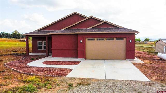 24190 Road S.8, Dolores, CO 81323 (MLS #787328) :: The Howe Group   Keller Williams Colorado West Realty
