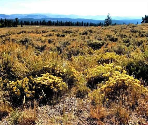 812 Cinnamon Trail, Gunnison, CO 81230 (MLS #787331) :: The Howe Group   Keller Williams Colorado West Realty