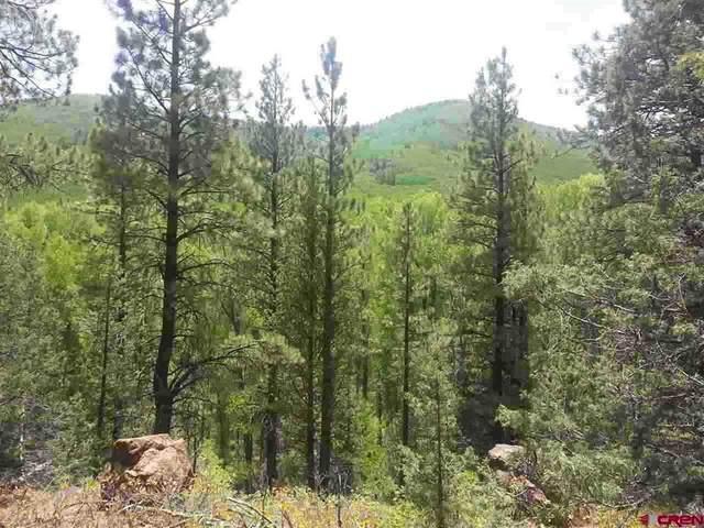 26965 Highway 145, Dolores, CO 81323 (MLS #787335) :: The Howe Group | Keller Williams Colorado West Realty