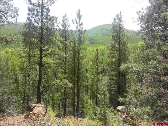 26943 & 26965 Highway 145, Dolores, CO 81323 (MLS #787336) :: The Howe Group | Keller Williams Colorado West Realty