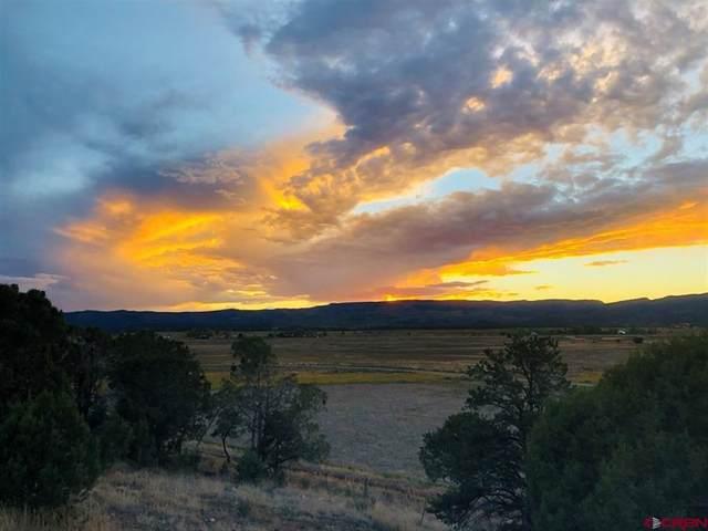 248 Mesa Encantada, Durango, CO 81303 (MLS #787392) :: Durango Mountain Realty