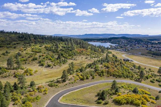 219 Casey Court, Pagosa Springs, CO 81147 (MLS #787434) :: The Howe Group | Keller Williams Colorado West Realty