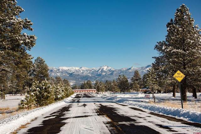 22 Ryder Court, Pagosa Springs, CO 81147 (MLS #787447) :: The Howe Group   Keller Williams Colorado West Realty