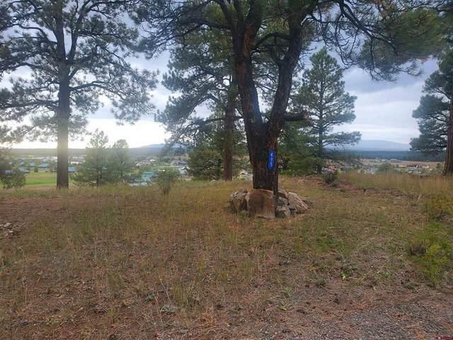 495 Handicap Avenue, Pagosa Springs, CO 81147 (MLS #787448) :: The Howe Group | Keller Williams Colorado West Realty