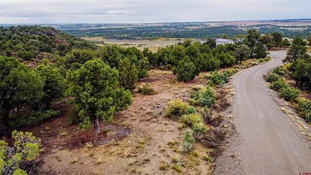 TBD Road 24.6, Dolores, CO 81323 (MLS #787451) :: The Howe Group | Keller Williams Colorado West Realty
