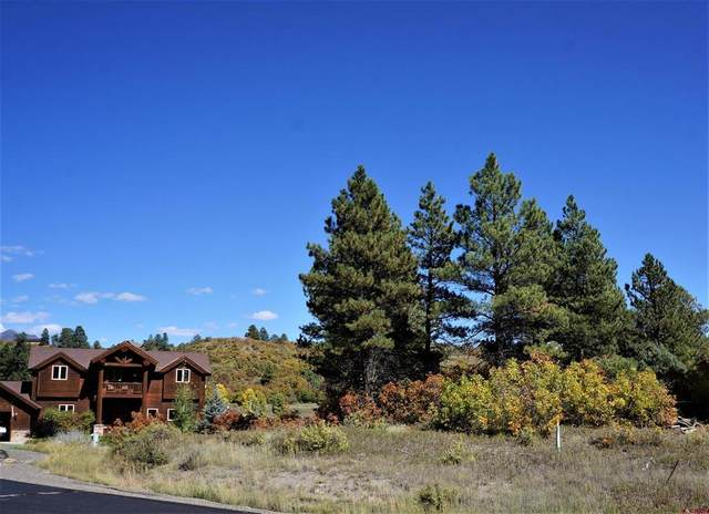 107 Chase Court, Pagosa Springs, CO 81147 (MLS #787564) :: The Howe Group | Keller Williams Colorado West Realty