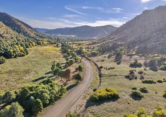 TBD Road 46, Mancos, CO 81328 (MLS #787606) :: The Howe Group   Keller Williams Colorado West Realty