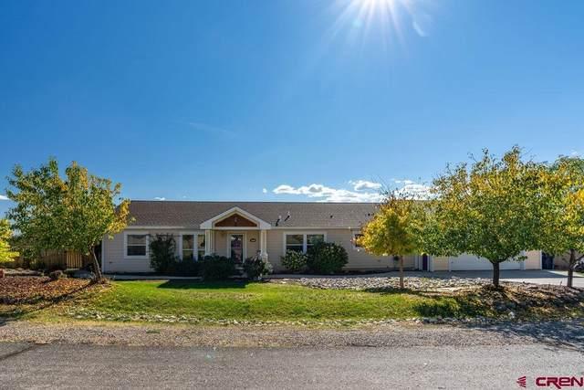 207 Homestead Circle, Bayfield, CO 81122 (MLS #787608) :: The Howe Group | Keller Williams Colorado West Realty