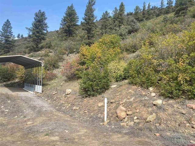 973 Bear Creek Road, Bayfield, CO 81122 (MLS #787631) :: The Howe Group   Keller Williams Colorado West Realty