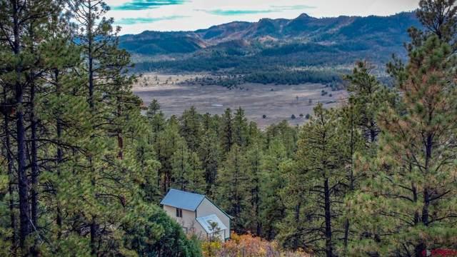 71 Rocky Ridge 2, Pagosa Springs, CO 81147 (MLS #787673) :: The Howe Group | Keller Williams Colorado West Realty
