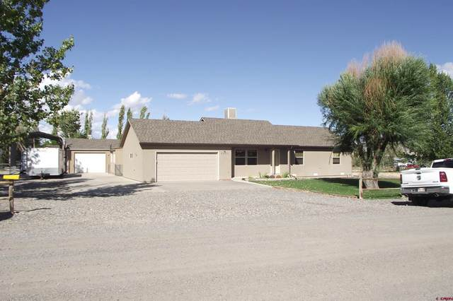 60851 Guernsey Road, Montrose, CO 81401 (MLS #787694) :: The Howe Group | Keller Williams Colorado West Realty