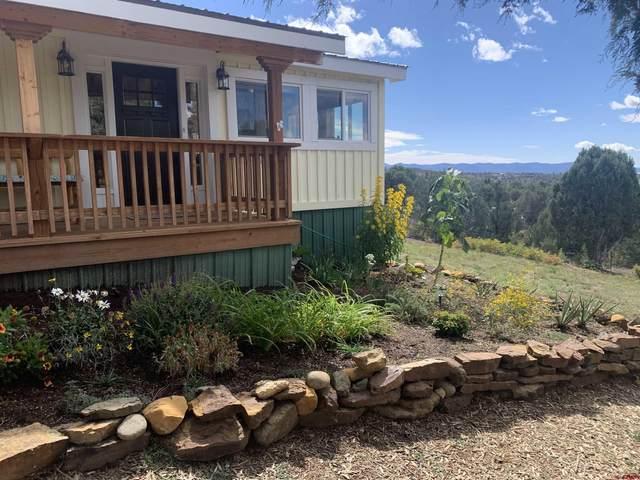 14517 Road 35.9, Mancos, CO 81328 (MLS #787708) :: The Howe Group | Keller Williams Colorado West Realty