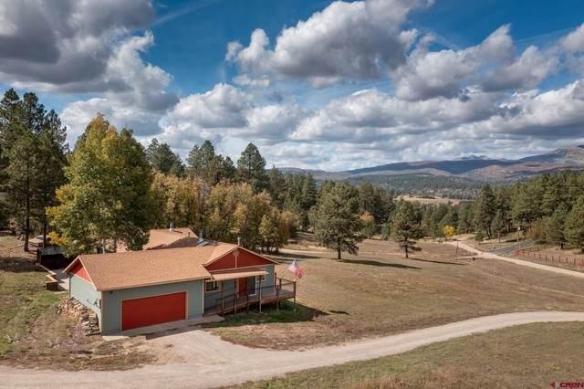250 North Road, Durango, CO 81303 (MLS #787711) :: Durango Mountain Realty