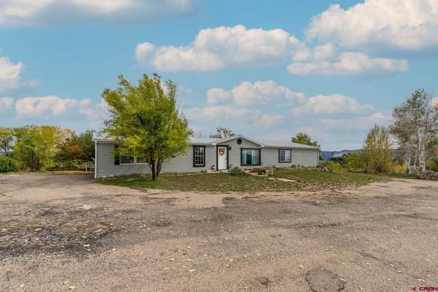 25109 Road L.4, Cortez, CO 81321 (MLS #787720) :: The Howe Group | Keller Williams Colorado West Realty