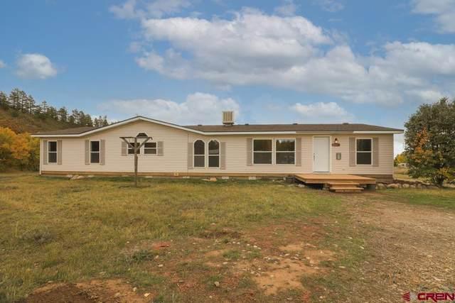 21337 140 Highway, Hesperus, CO 81326 (MLS #787726) :: Durango Mountain Realty