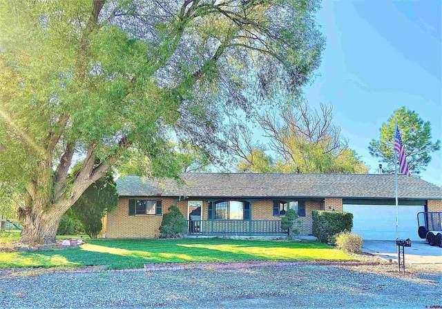 561 Cypress Wood Lane, Delta, CO 81416 (MLS #787733) :: The Howe Group   Keller Williams Colorado West Realty