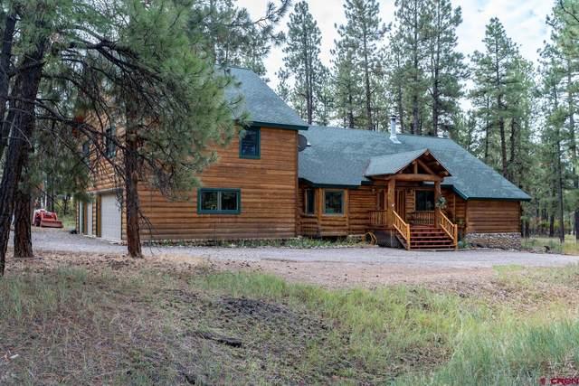 552 Fantango Road, Durango, CO 81301 (MLS #787737) :: Durango Mountain Realty