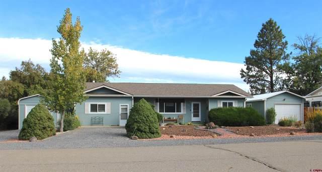 220 SE Frontier Avenue, Cedaredge, CO 81413 (MLS #787751) :: The Howe Group | Keller Williams Colorado West Realty