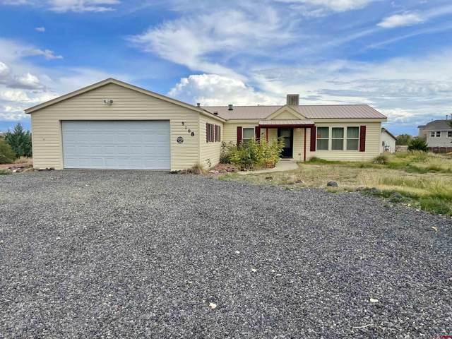 9108 1995 Road, Austin, CO 81410 (MLS #787755) :: The Howe Group   Keller Williams Colorado West Realty