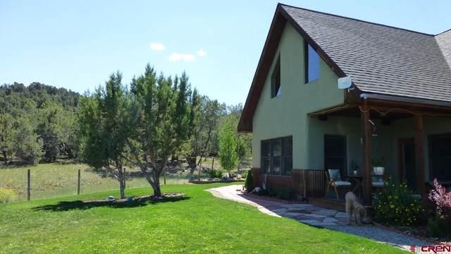 35786 J.9 Road, Mancos, CO 81328 (MLS #787762) :: The Howe Group   Keller Williams Colorado West Realty