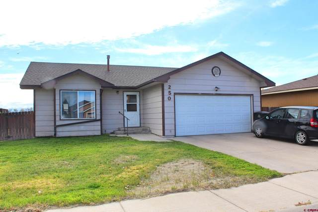 250 Calle Buena, Alamosa, CO 81101 (MLS #787765) :: The Howe Group | Keller Williams Colorado West Realty