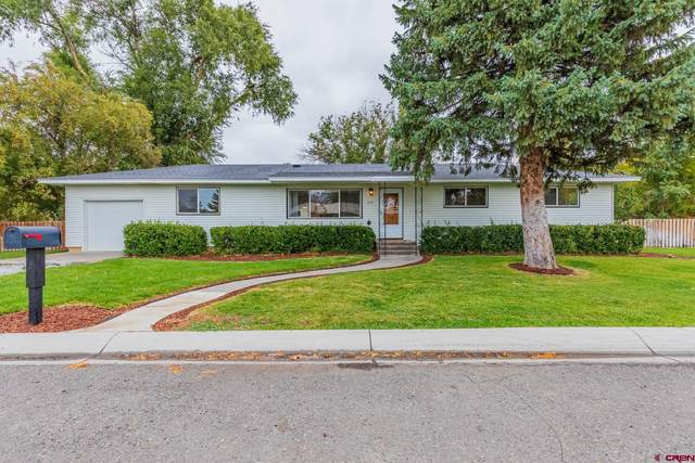 200 Brown Road, Montrose, CO 81401 (MLS #787805) :: The Howe Group | Keller Williams Colorado West Realty
