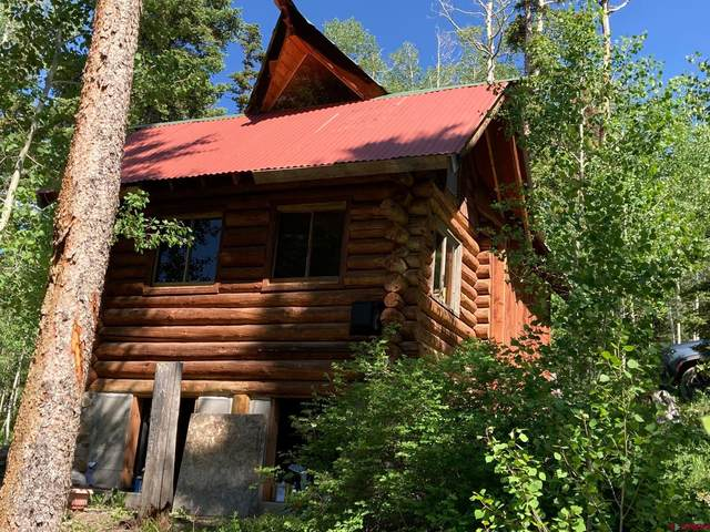 4734 San Juan Vista Drive, Placerville, CO 81430 (MLS #787811) :: The Howe Group   Keller Williams Colorado West Realty