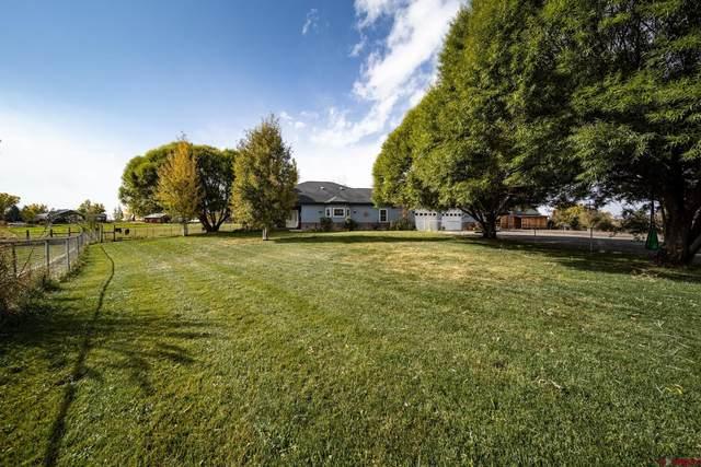 12703 6100 Road, Montrose, CO 81403 (MLS #787823) :: The Howe Group | Keller Williams Colorado West Realty