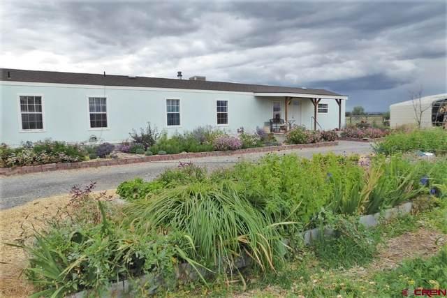 2405 Mesa Drive, Olathe, CO 81425 (MLS #787824) :: The Howe Group | Keller Williams Colorado West Realty