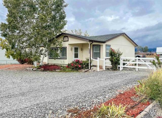 21173 Mountain Village Drive, Eckert, CO 81418 (MLS #787825) :: The Howe Group | Keller Williams Colorado West Realty