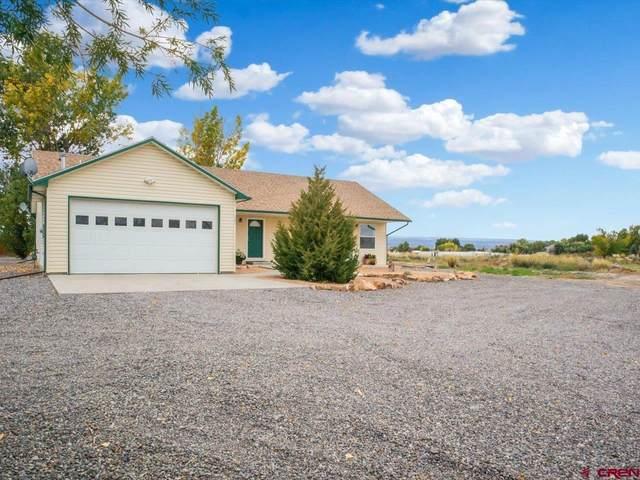 64856 Kourtney Lane, Montrose, CO 81401 (MLS #787826) :: The Howe Group | Keller Williams Colorado West Realty