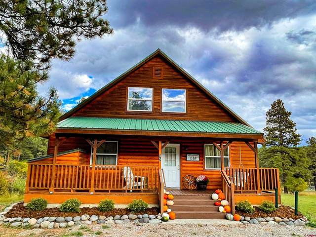 35 Jackson Court, Pagosa Springs, CO 81147 (MLS #787844) :: The Howe Group | Keller Williams Colorado West Realty