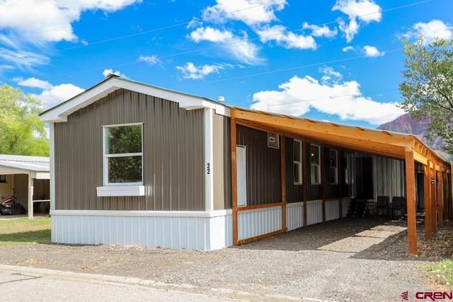 22 Huckleberry Lane, Durango, CO 81301 (MLS #787851) :: Durango Mountain Realty