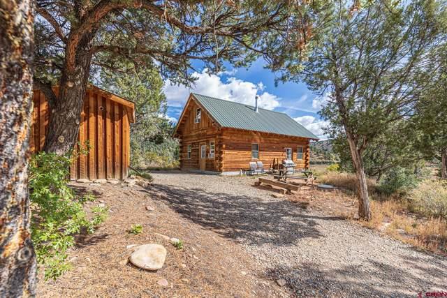 7055 Cr 105, Hesperus, CO 81326 (MLS #787852) :: Durango Mountain Realty