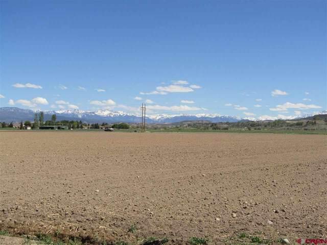 Lot:3 Orange Road, Montrose, CO 81403 (MLS #787860) :: The Howe Group | Keller Williams Colorado West Realty